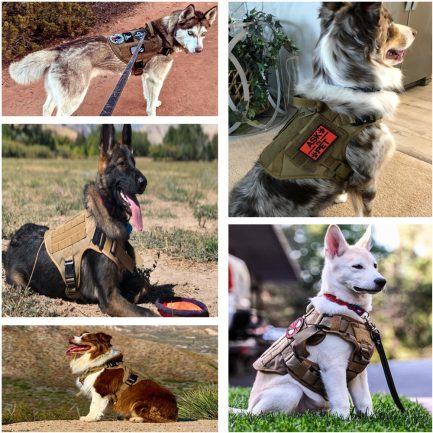Military Tactical Dog Harness Pet Training Dog Vest Metal Buckle German Shepherd K9 Dog Harness and Leash For Small Large Dogs